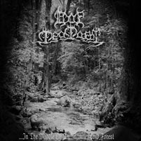 Dor Feafaroth - ...In the Middle of an Infinite, Cold Forest (2005) demo