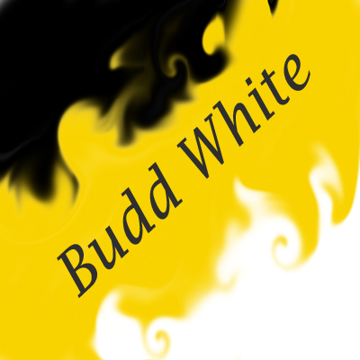 Budd White - Tracks (2010-2011)