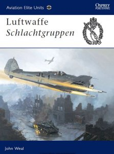 Luftwaffe Schlachtgruppen (Osprey Aviation Elite Units 13)