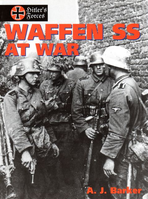 a brief analysis of waffen ss by george h stein Nazi soldiers of world war 2 see for instance the waffen ss 1939-45, george hstein research, exploration, & analysis.